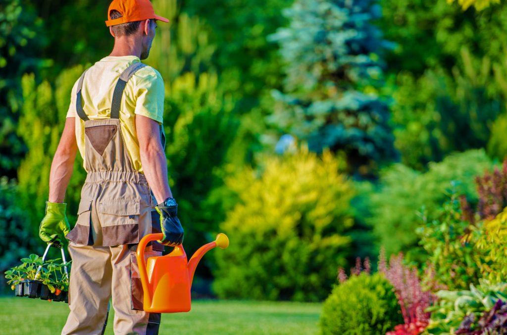 alquiler herramientas para jardín