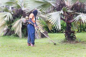 herramientas-jardineria-jardinero