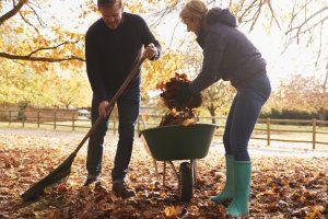 recojer hojas rastrillo otono- marti canudas